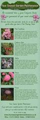 34 best shrubs images on pinterest garden ideas garden plants
