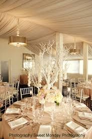 Diy Branches Centerpieces by 118 Best Manzanita Branches Images On Pinterest Manzanita