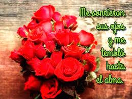 bonitas de rosas rojas con frases de amor imagenes de amor facebook imágenes de rosas hermosas para compartir
