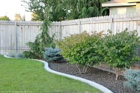backyard ideas for dogs u2013 sunset u2013 backyard garden landscaping