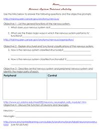 nervous system objectives web quest