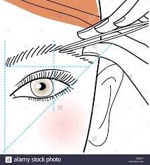 How To Shape Eyebrow Step By Step How To Shape Your Brows Step Shaping Eyebrows With