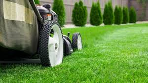 Lawn And Landscape by How To Save On Summer Lawn And Landscape Care