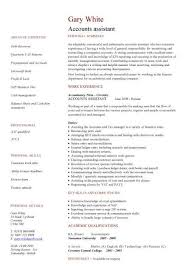 Accounting Assistant Job Description For Resume by Financial Cv Template Business Administration Cv Templates