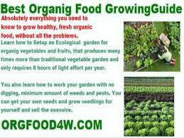 creative of fertilizing vegetable garden vegetable garden