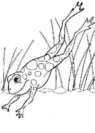 brave coloring 46 coloring pages
