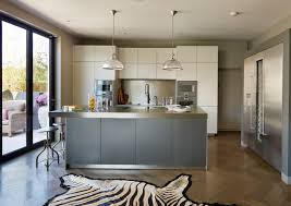 Zebra Kitchen Rug Zebra Hide Rug Kitchen Contemporary With 2 Tone Kitchen Bifold
