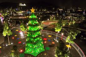 top 10 more christmas trees terrific top 10