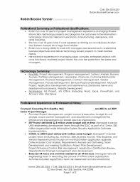 Example Of Business Analyst Resumes System System Analysis Document Template Impact Analysis Document