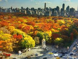 fall nyc including halloween events