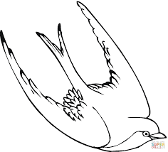 swallow bird coloring page free printable coloring pages