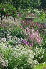 plants that give you bang for your buck best zone perennials ideas