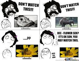Sex Meme Comics - bee flower sex by feroooo meme center