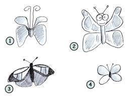 drawn butterfly easy pencil color drawn butterfly easy