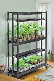 indoor garden lights gardening ideas