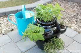 Herb Container Garden - strawberry pot herb garden satori design for living