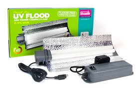 uv light for birds arcadia parrot pro uv flood light garden feathers bird supplies