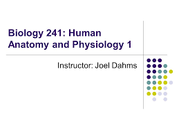 What Is Human Anatomy And Physiology 1 Biology 241 Human Anatomy And Physiology 1 Instructor Joel Dahms