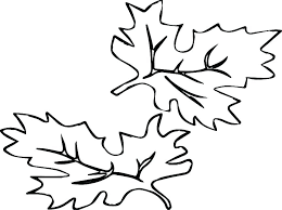 coloring pages of autumn fall tree leaf coloring page free autumn coloring pages autumn