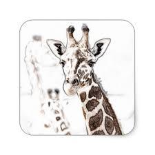 giraffe head stickers zazzle