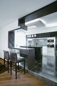contemporary apartment decor beautiful pictures photos of