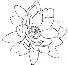 bring you lots of fortune lotus flower colouring page colouring tube