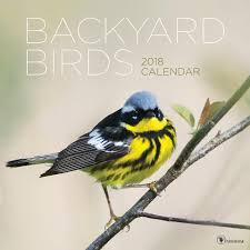 backyard birds u2013 tf publishing 2018 calendars planners