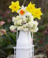 Flowers In A Vase Images Q U0026a Is It True That Daffodils Kill Other Flowers In A Vase