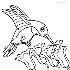 printable hummingbird coloring pages kids cool2bkids