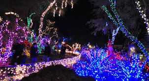 magnificent ornaments on the christmas photos from nevada 2016 2017
