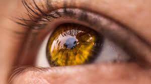 macro lashes iris pupil eye hd wallpapers 4k
