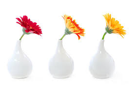 Creative Flower Vases Gerbera Flowers In Vases Photograph By Elena Elisseeva