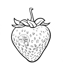 realistic strawberry coloring page for kids fruits coloring pages