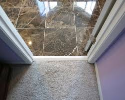 Door Threshold Houzz - Bathroom door threshold 2