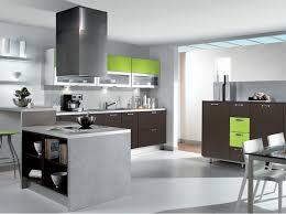 cuisine gris et vert cuisine wenge et blanc 2 idées de décoration capreol us