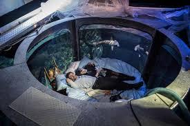 Bill Gates Aquarium In House by Aquarium Bedroom Wcoolbedroom Com