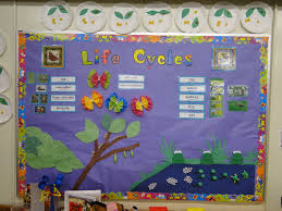 life cycles of a butterfly and frog bulletin board crafts fr