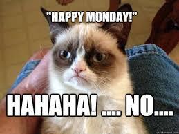Grumpy Cat Monday Meme - happy monday hahaha no grumpy cat phone quickmeme