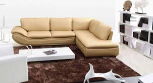 awesome apartment sectional sofa pictures house design ideas