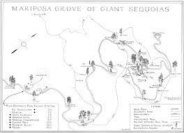 Us National Parks Map A Guide To The Giant Sequoias Of Yosemite National Park 1949