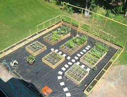 Garden Bed Layout Raised Vegetable Garden Bed Layout Hydraz Club