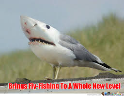 Fly Fishing Meme - fly fishing upgrade by xxkaosxx meme center