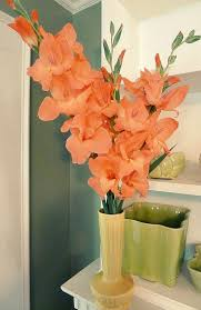 gladiolus flowers gladiolus flower facts flower pressflower press
