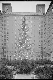 rockefeller center christmas tree history rockefeller tree