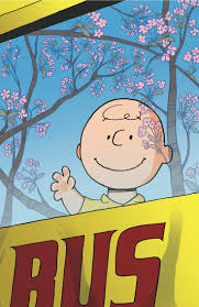 happy thanksgiving charlie brown quotes 286 best strictly charlie brown images on pinterest peanuts