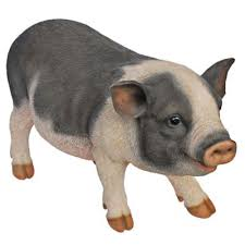buy real pot bellied pig ornament from our garden ornaments
