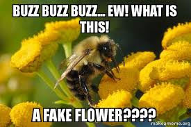 Flower Meme - buzz buzz buzz ew what is this a fake flower ermagerd bee