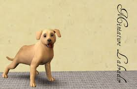 sims 3 australian shepherd mod the sims miniature breeds part four