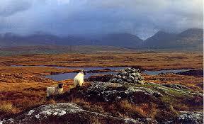 Rugged Landscape C My Documents Larkin Eavp Family Caitlin Ireland Thumbs