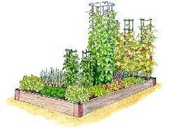 best 25 vegetable garden layout planner ideas on pinterest